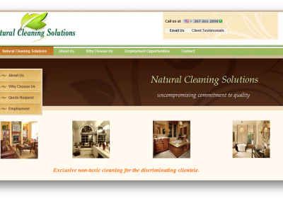naturalcleaningsolutions